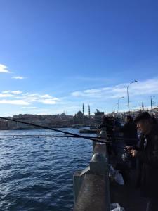 Galata Bridge fishermen Istanbul
