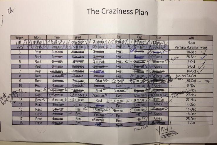 craziness-plan-final